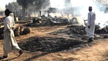 Boko Haram Terrorists Kills 69 People, Steals 1200 Livestocks, Razes Down Village In Borno State 9
