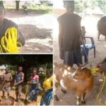 BENUE: Hon. Daniel Ukpera Donates Ropes To His Community Members To Tie Their Goats [Photos] 28