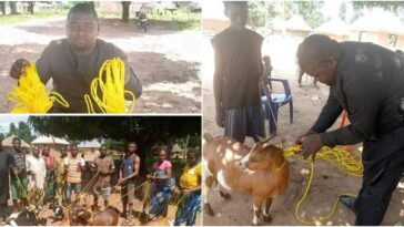 BENUE: Hon. Daniel Ukpera Donates Ropes To His Community Members To Tie Their Goats [Photos] 5
