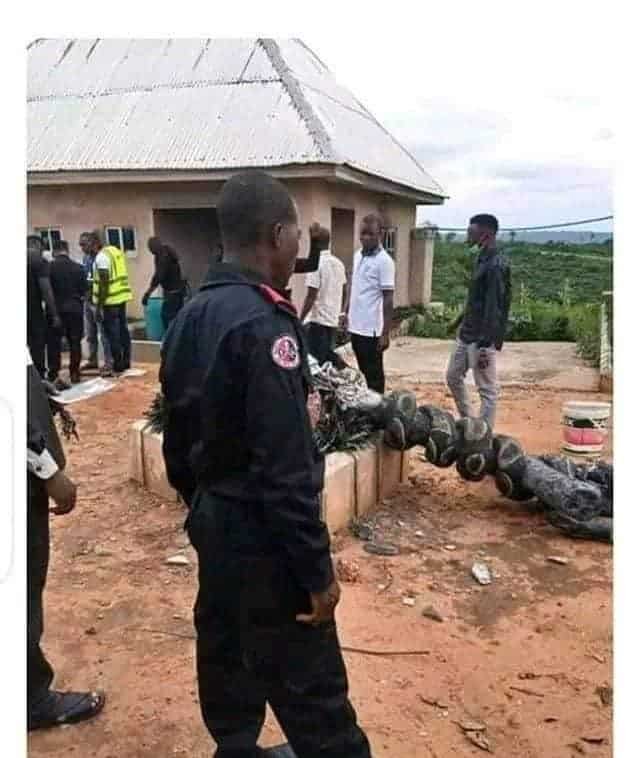 Angry Youths Destroy Church Of Satan In Abia, Founder Arrested [Photos] 7