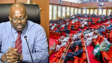 """We Spent N1.5 Billion On Ourselves As COVID-19 Relief Funds"" — NDDC Boss Confesses To Senate 7"