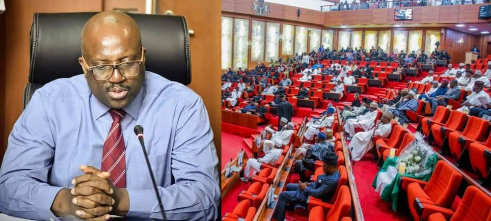 """We Spent N1.5 Billion On Ourselves As COVID-19 Relief Funds"" — NDDC Boss Confesses To Senate 1"