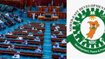 House Of Reps Probe NEDC Over Mismanagement Of N100bn Which 'Vanished Under One Year' 5