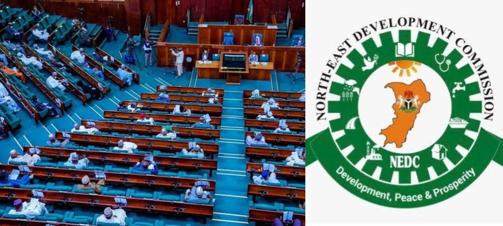 House Of Reps Probe NEDC Over Mismanagement Of N100bn Which 'Vanished Under One Year' 1