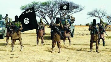 47 Boko Haram Fighter Quits Terrorist Group Due To Ethnic Discrimination And Lies Among Ranks 7