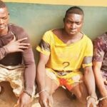 Police Arrests 3 Notorious Members Of 'One Million Boys' For Gang-Rαping A Lady In Ogun 28