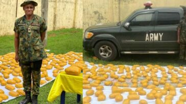Police Intercept Fake Nigerian Army Major Carrying 420 Packs Of Cannabis In Delta [Photos/Video] 5