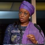 Diezani Madueke Laments The Rise Of 'Yahoo Boys' As Role Models To Nigerian Youths [Video] 27