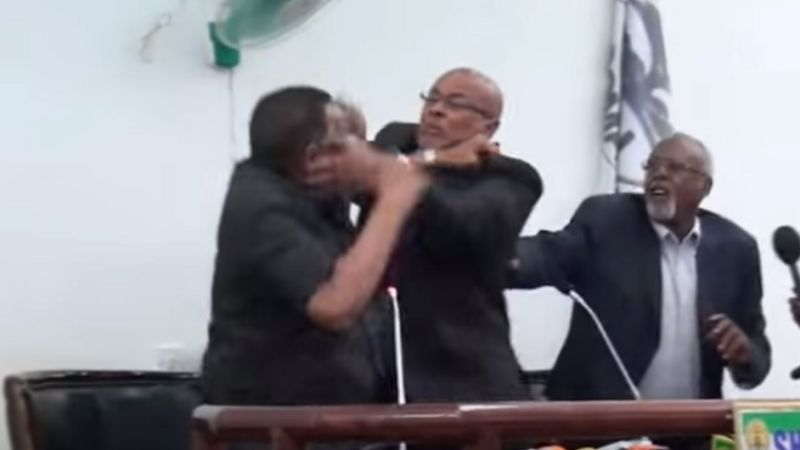 Somali President And His Vice Publicly Exchange Blows As They Fight Dirty On Live TV [Video] 1