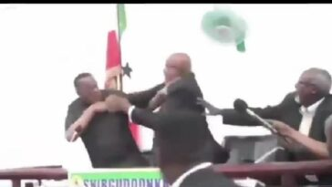 Somali President And His Vice Publicly Exchange Blows As They Fight Dirty On Live TV [Video] 2