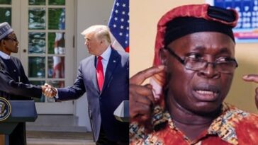 MURIC: Islamic Group Attacks Trump For Questioning Buhari About Killing Of Christians 2