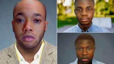 3 Nigerian Men Become First In Irish History To Be Charged Over 'Romance Scam' Internet Fraud 3