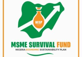 Survival Fund Registration Portal: How to register for survival fund 2020 8