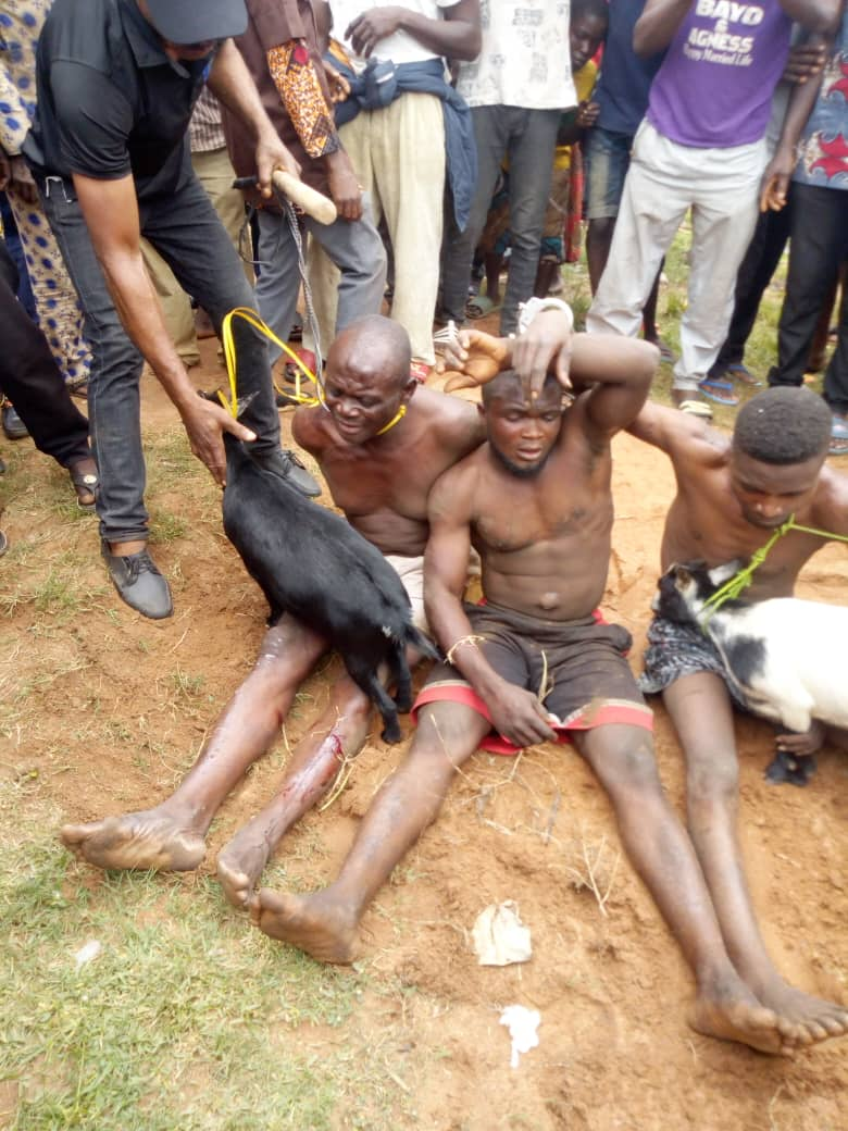 Retired Police Officer Arrested For Stealing Goats To Celebrate Late Mom's Remembrance In Benue 2
