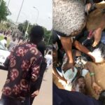 Pro SARS Thugs Attacks Peaceful #EndSARS Protesters In Berger, Abuja [Video] 28
