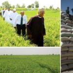 """""""Nigeria Now Africa's Biggest Rice Producing Nation"""" – Agric Minister, Sabo Nanono 27"""