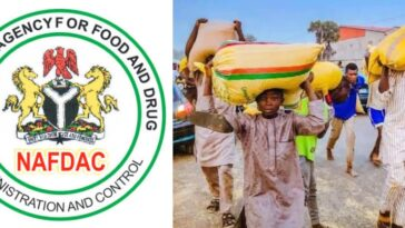 """Don't Eat Looted Food Items, It Can Cause Serious Illness And Death"" - NAFDAC Warns 11"
