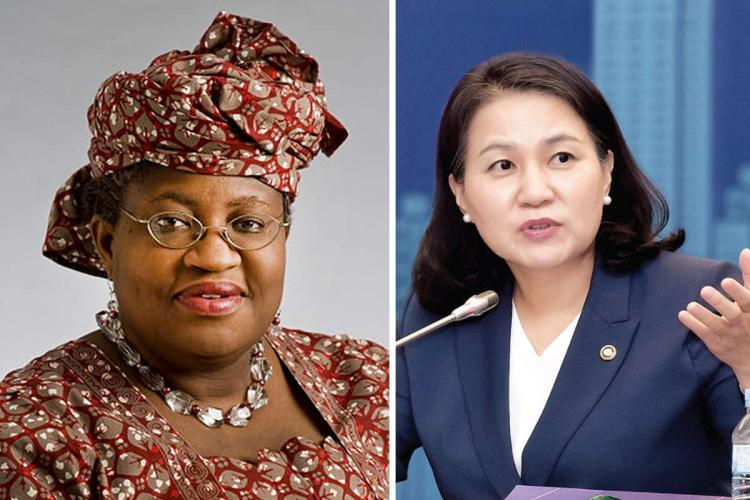 United State Blocks Okonjo-Iweala's Appointment As WTO DG, Insists On South Korean 1