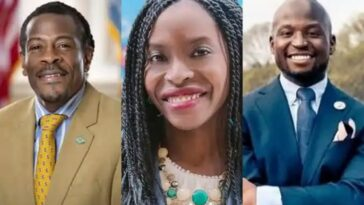 Meet Three Nigerian-Americans Who Won Legislative Seats In US Elections 1