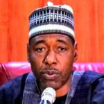 """Boko Haram Started With Youth Protests"" - Governor Zulum Warns #EndSARS Promoters 27"