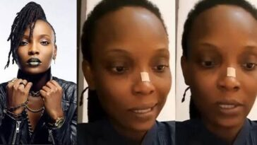Lekki Shooting: DJ Switch Escapes From Nigeria As She Testifies Before Canadian Parliament 4