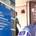 Falana Reacts As Group Drags Him To International Criminal Court Over #EndSARS Protest 27