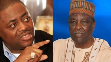 Fani-Kayode Attacks UK Parliamentarian For Accusing Gowon Of Stealing 'Half Of CBN' 8