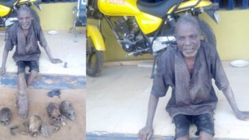 55-Year-Old Man Arrested With Four Human Skulls, Three Hands, Other Body Parts In Ogun 16