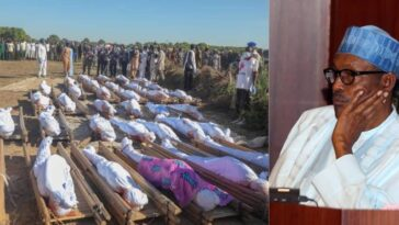 INSECURITY: Northern Elders Demand Buhari's Resignation Over Borno Farmers Killings 5