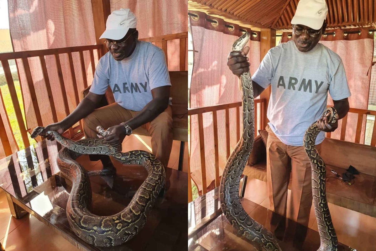 Army Boss, Buratai Poses With Snake In His Farm, Keeps Mum On Katsina Abduction 1