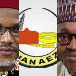 """Stop Labelling IPOB As Terrorist Group"" - Ohanaeze Ndigbo Tells Nigerian Government 26"