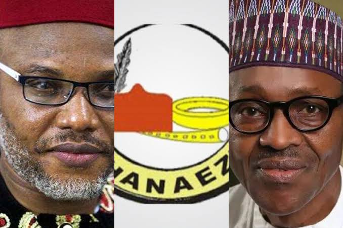 """Stop Labelling IPOB As Terrorist Group"" - Ohanaeze Ndigbo Tells Nigerian Government 1"