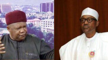 Cabal Ruling Nigeria Like Drunken Sailors After Hijacking Buhari's Governemnt – Mailafia 6