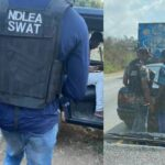 Outrage As New Security Outfit 'NDLEA SWAT' Spotted On Highway Searching People's Phone 27