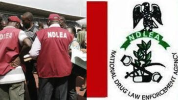 NDLEA Releases List Of Successful Recruited Applicants, Reveals How To Check 3