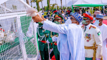 Drama As Pigeons Released By Buhari Refuse To Fly At Armed Forces Remembrance [Video] 13