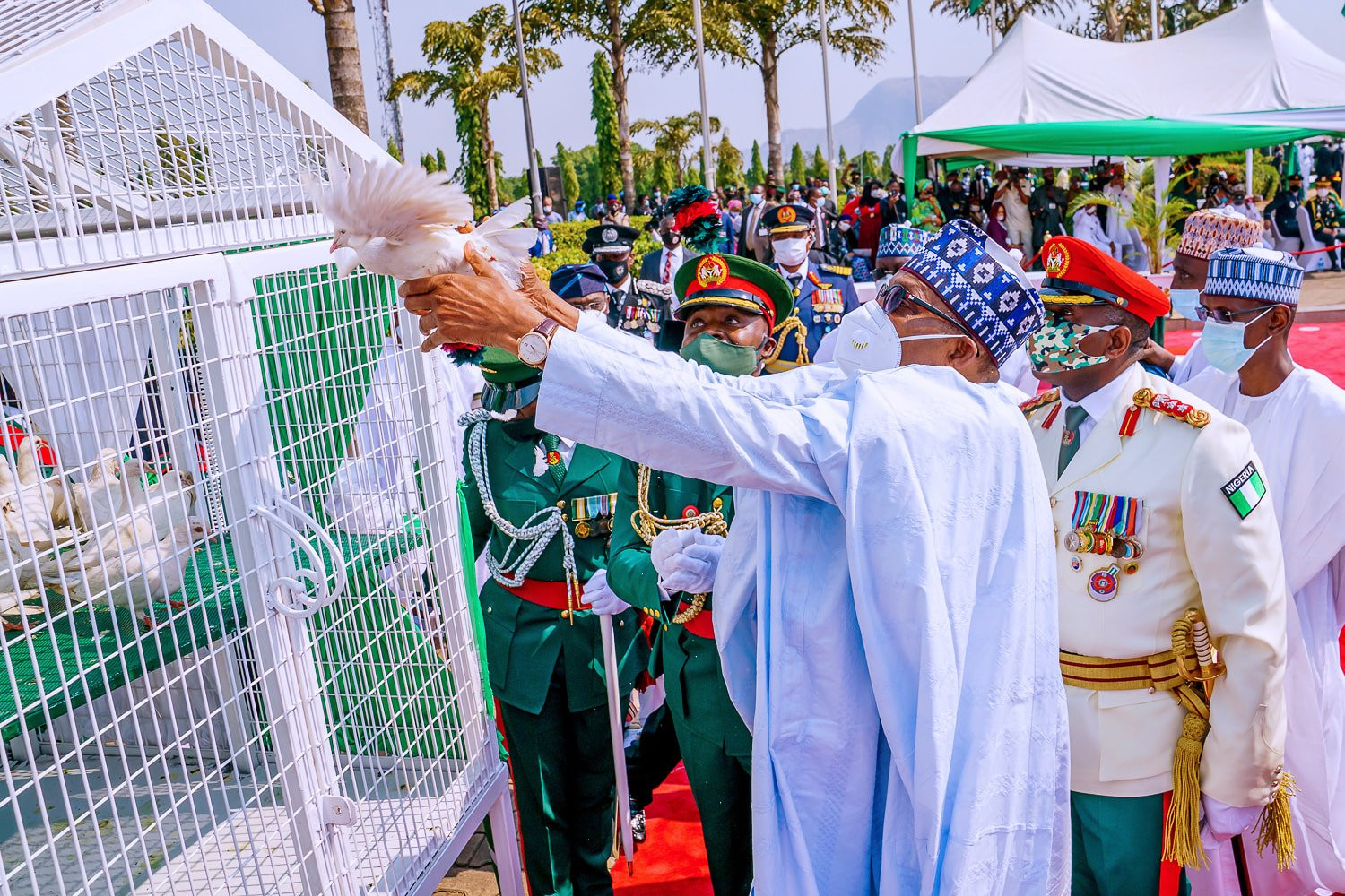 Drama As Pigeons Released By Buhari Refuse To Fly At Armed Forces Remembrance [Video] 1