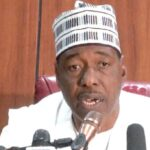 Some Members Of Boko Haram Are Christians, White Men, Asians – Governor Zulum 11
