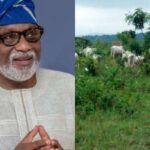 Insecurity: Governor Akeredolu Gives Herdsmen 7 Days Ultimatum To Vacate Ondo Forest 27