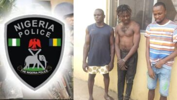 Police Arrest 3 Suspect For Beating 23-Year-Old Man To Death Over Phone Theft In Ogun 13