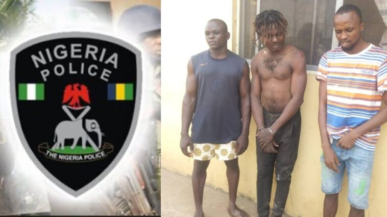 Police Arrest 3 Suspect For Beating 23-Year-Old Man To Death Over Phone Theft In Ogun 3
