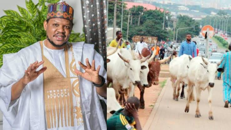 Adamu Garba Criticizes Fulani Herdsmen For Roaming The Streets With Cows 2
