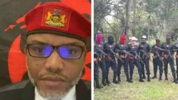 Herdsmen Flee As Nnamdi Kanu's ESN Attacks Fulani Camp, Kills Many Cows In Abia 3