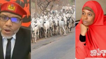 """""""Turn Into A Cow And See What Will Happen To You"""" — Nnamdi Kanu Replies Aisha Yesufu 4"""