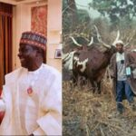 Northern Governors Asks FG For Financial Aid To Start Cattle Ranching For Fulani Herdsmen 28