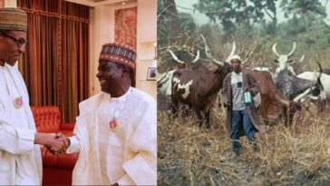 Northern Governors Asks FG For Financial Aid To Start Cattle Ranching For Fulani Herdsmen 2