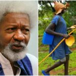 Police Speak On Alleged Attack On Wole Soyinka's House By Fulani Herdsmen In Ogun 29