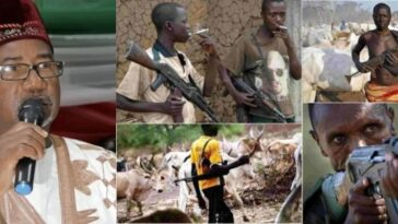 Bauchi Governor Defends Fulani Herdsmen Carrying Ak-47, Says It's For Self Defence 7