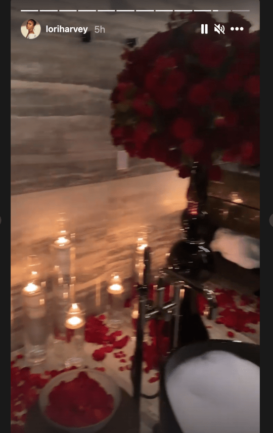 Michael B. Jordan Rents Out Entire Aquarium For First Valentine's Day With Lori Harvey [Photos] 11