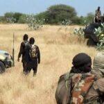 Boko Haram Attacks Military Base In Borno, Kills Seven Nigerian Soldiers 16